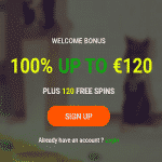 20Bet Casino Review