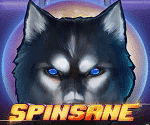 SPINSANE Video Slot
