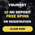 Your Bet Casino Review
