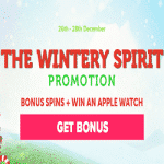 The Wintery Spirit - a promotion by CasinoLuck