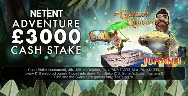 Coin Falls Casino Promotion