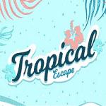 A Tropical Escape with MrFavorit casino