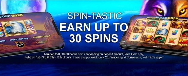 Royal Bets Casino Promotion