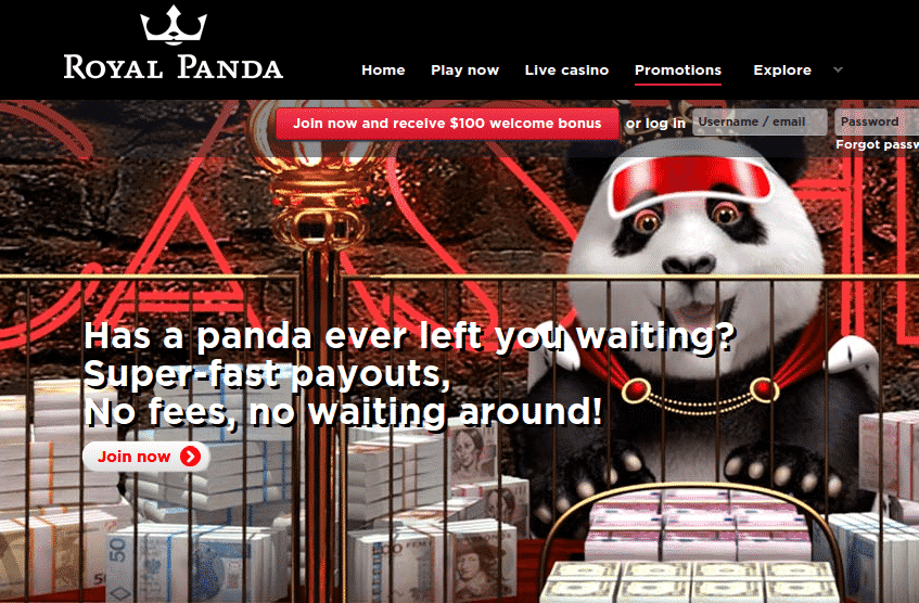 Royal Panda Exclusive Free Spins