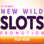 WildSlots Casino: New Wild Slots Promotion