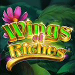 Wings of Riches - 16th December (2019)